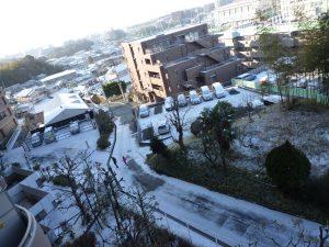 雪景色と野菜高騰!